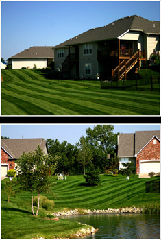 summer fall lawn service