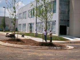 commercial plantng landscape maintenance Northern VA